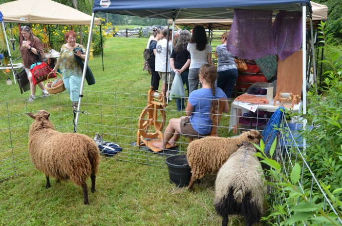 RiversleaFiberFest_sheepdisplay