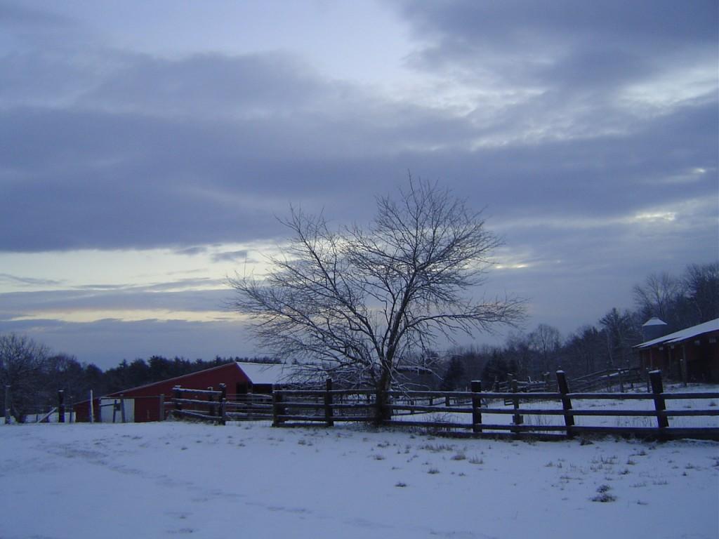 Riverslea_winterview2